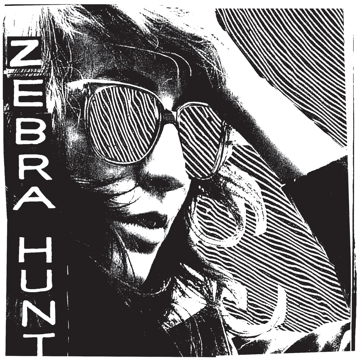Zebra Hunt 2