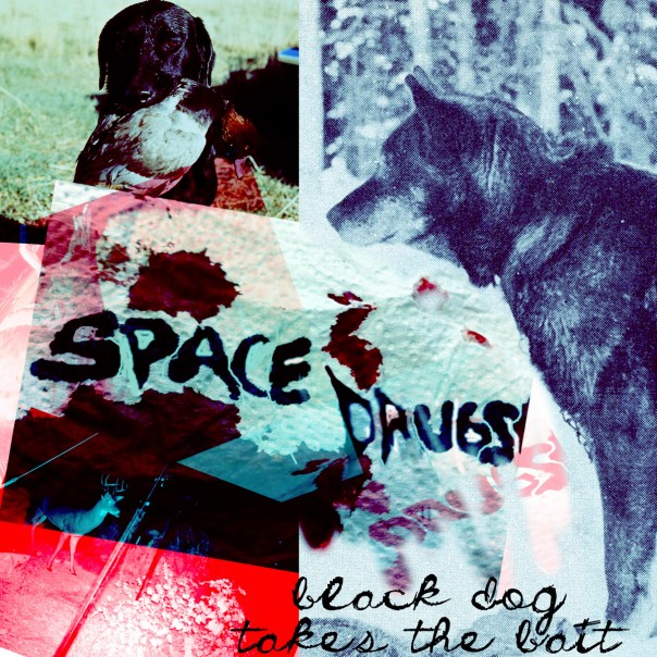 Space Drugs - Black Dog Takes The Bait