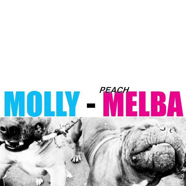 Molly - Peach Melba