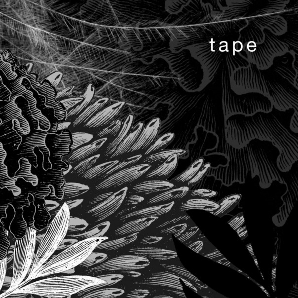 Silent Era - 2014 Tape