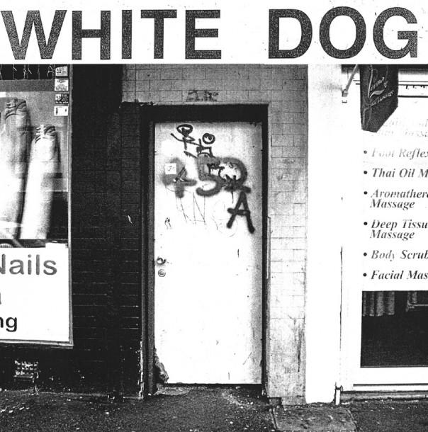 White Dog - 452A