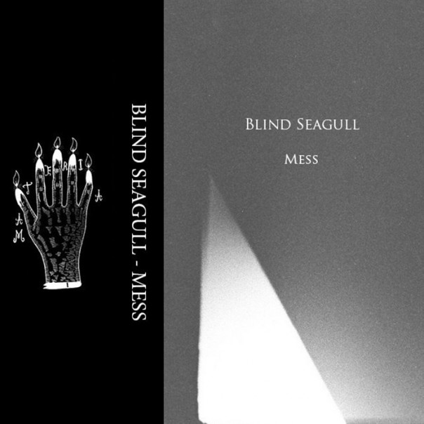 Blind Seagull - Mess