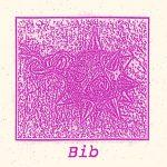 BIB - Demo