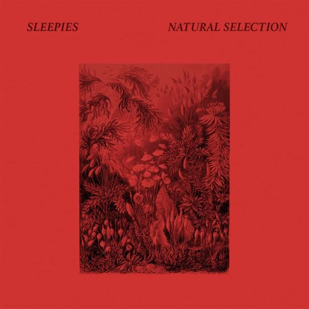Sleepies - Natural Selection