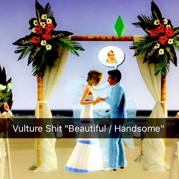 Vulture Shit - Beautiful/Handsome