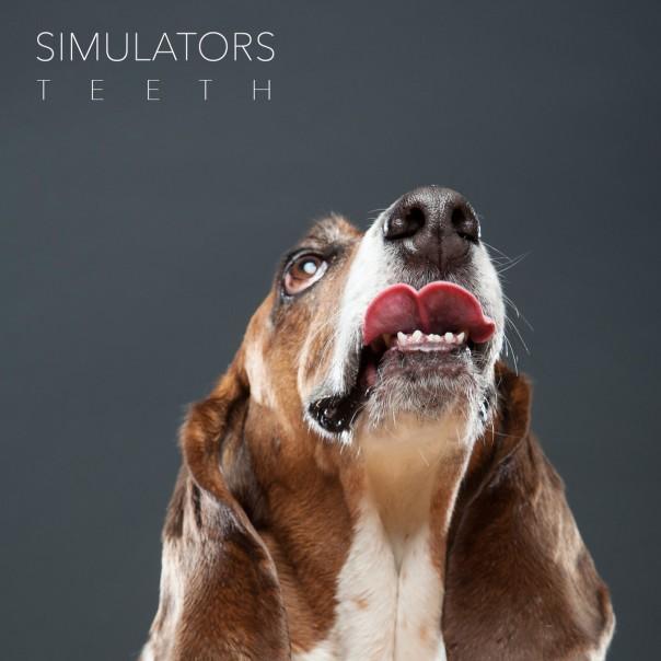 Simulators - Teeth