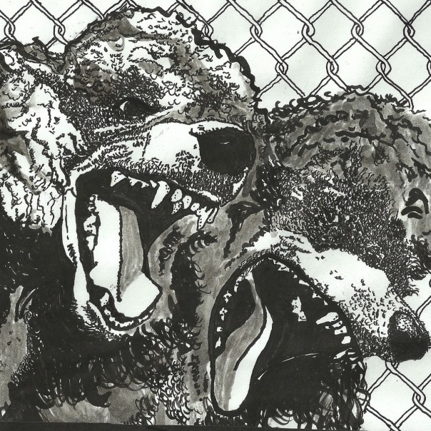 Urochromes - Night Bully