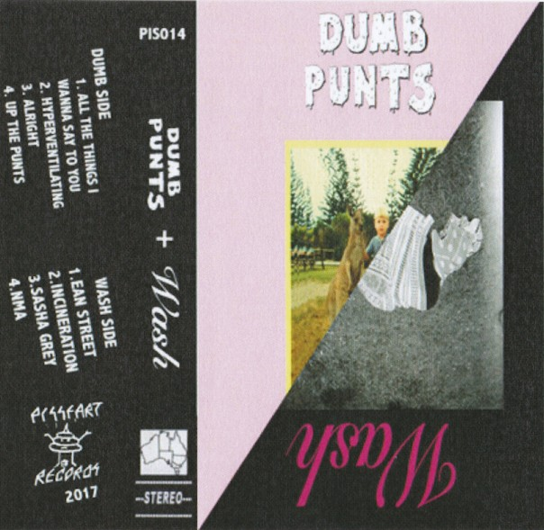 Dumb Punts & Wash - Split