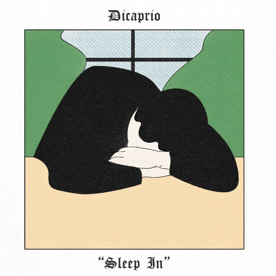 DiCaprio - Sleep / Hair