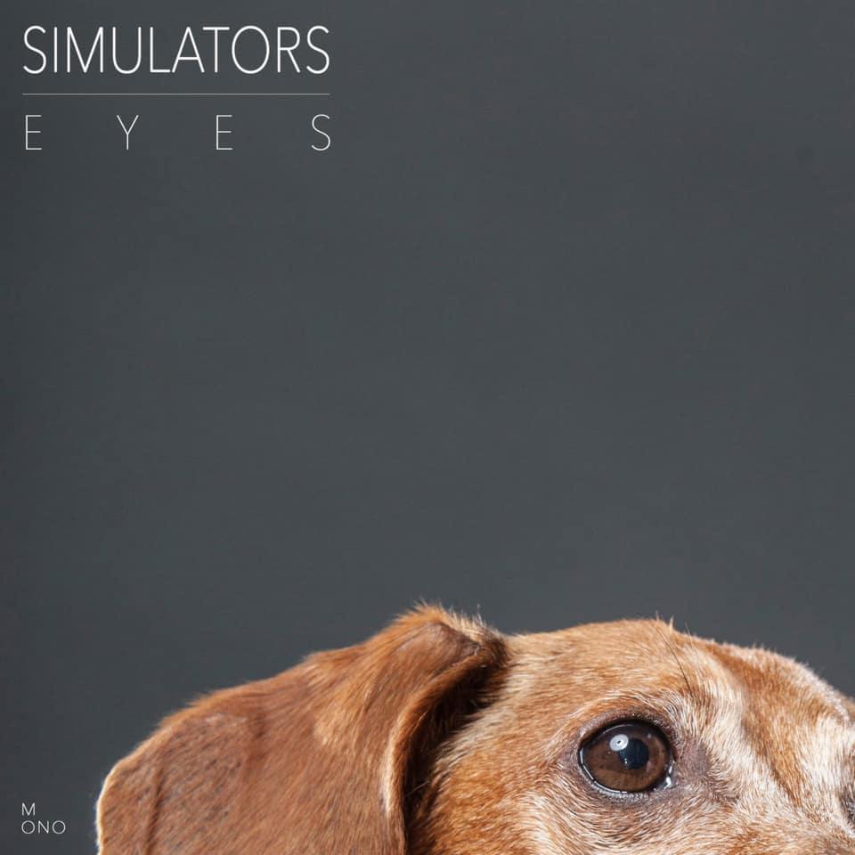 Simulators - Eyes