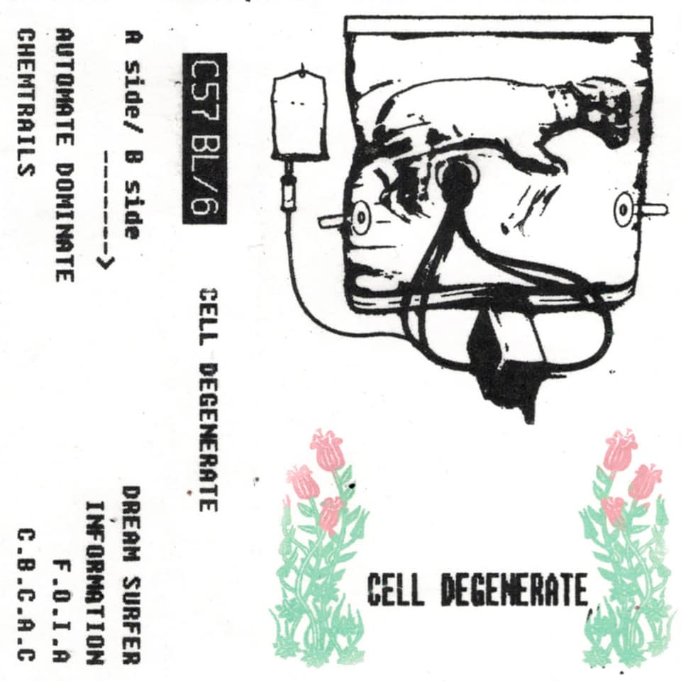 C57BL/6 - Cell Degenerate