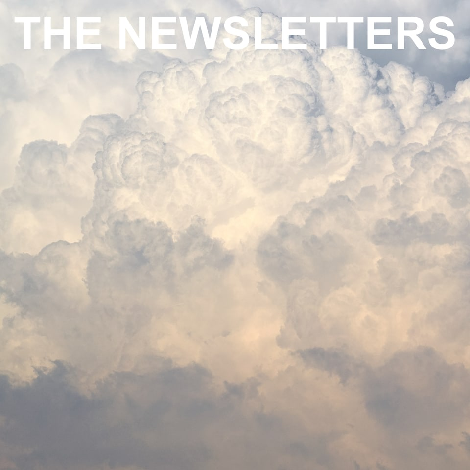 The Newsletters - The Newsletters