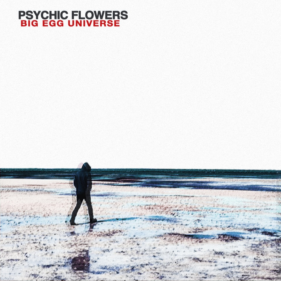 Psychic Flowers - Big Egg Universe
