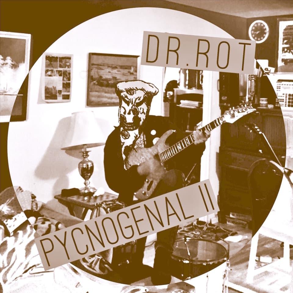 Dr. Rot - Pycnogenol II