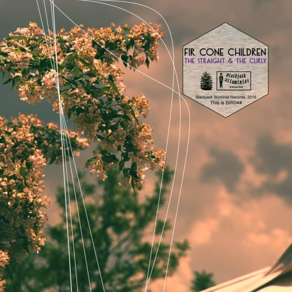 Fir Cone Children - The Straight & The Curly