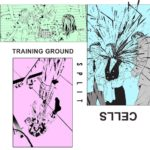 Training Ground & Cells - Split /​/​/​ Neo Neos - Kill Someone You Hate