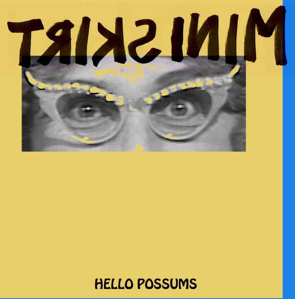 Mini Skirt - Hello Possums