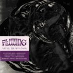 Fluung - Satellite Weather