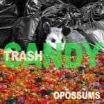 Opossums - Trashcandy