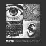 Moth - Machine Nation